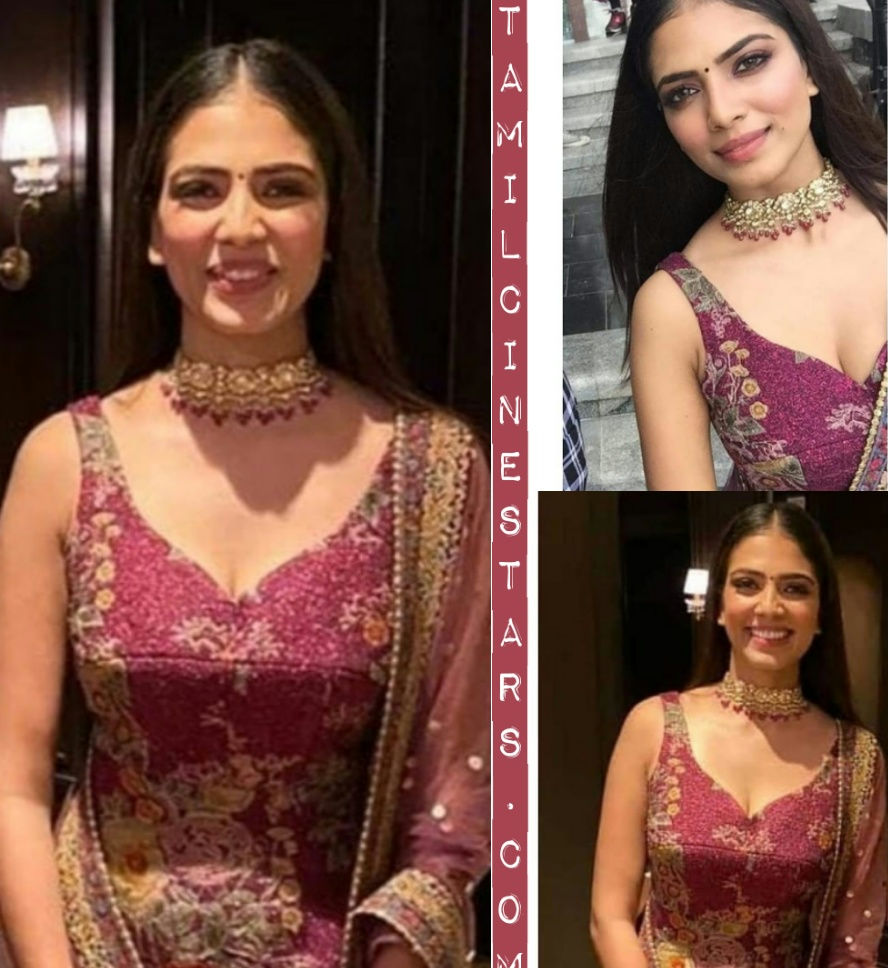 Gorgeous Mallu Actress Malavika mohanan Master audio launch